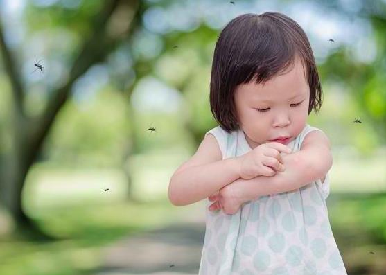 Cara Aman dan Efektif Mencegah Anak dari Gigitan Nyamuk